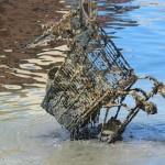 A Livorno si va a pesca
