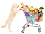 Cani e Carrelli della Spesa